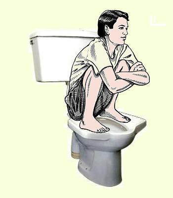 Pedestal-squat-toilet